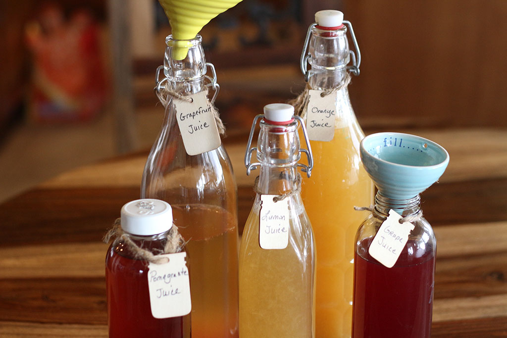 Fruit Flavored Kombucha