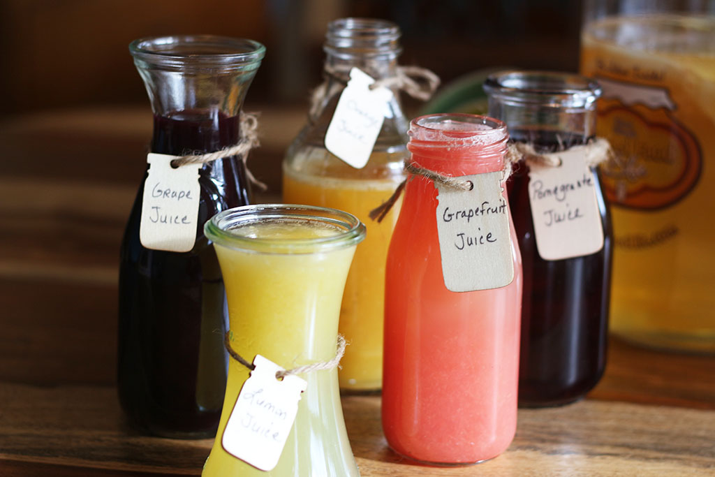 Kombucha Juices