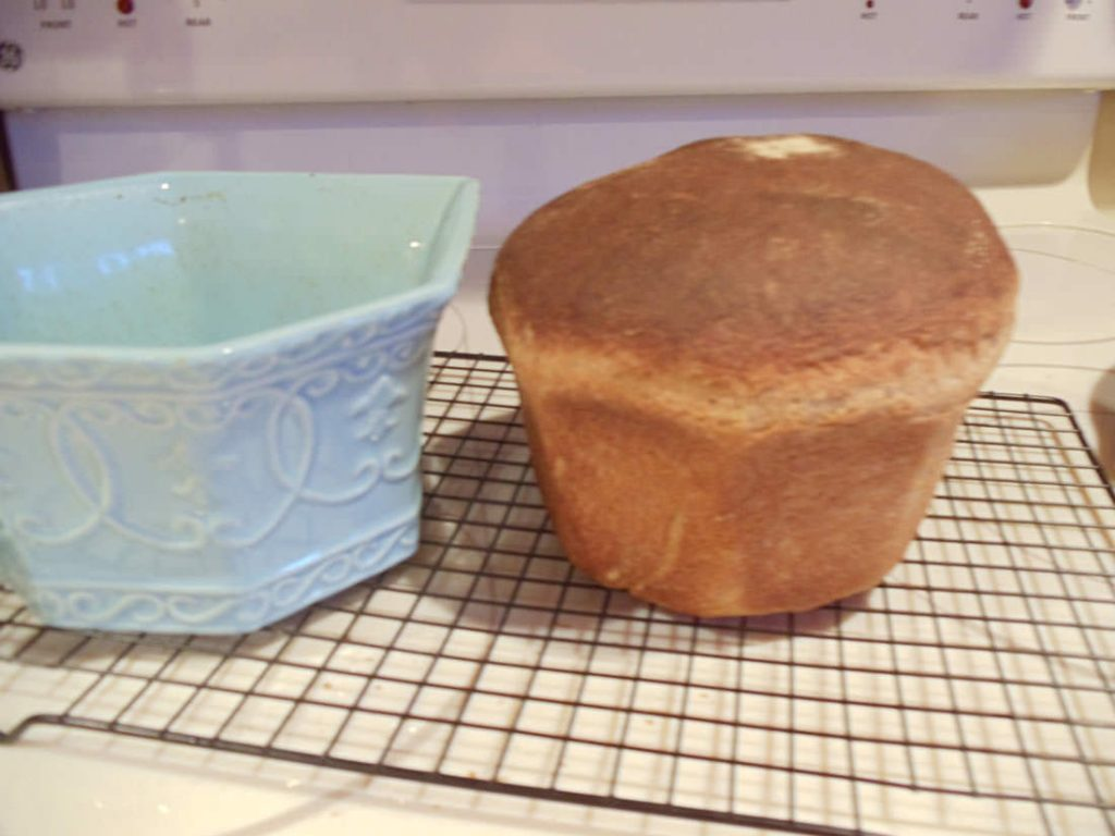 Sourdoughh & sprouted breads
