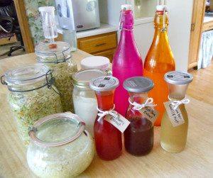 ferments in my kitchen