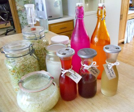 Ferments in my Kitchen