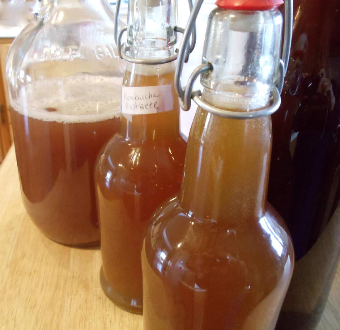 Root Beer Kombucha