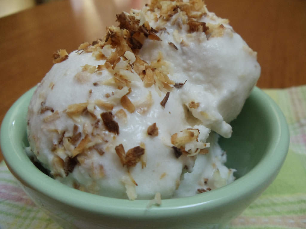 Coconut Kefir Ice cream