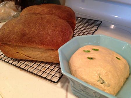 Basil sourdough bread