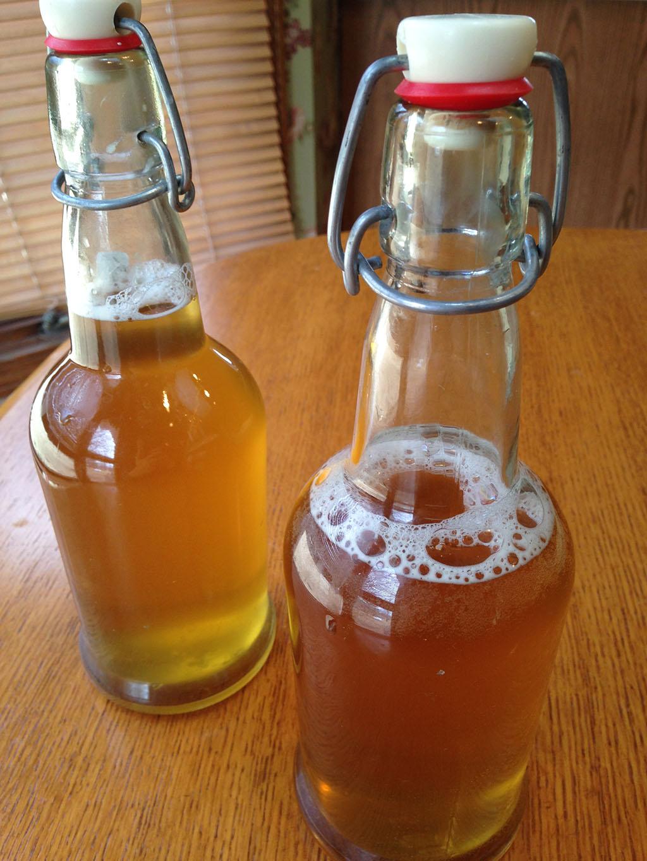 kombuca bottles