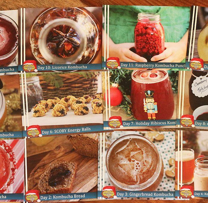 Donna's Book Bundle - Cultured Food Life