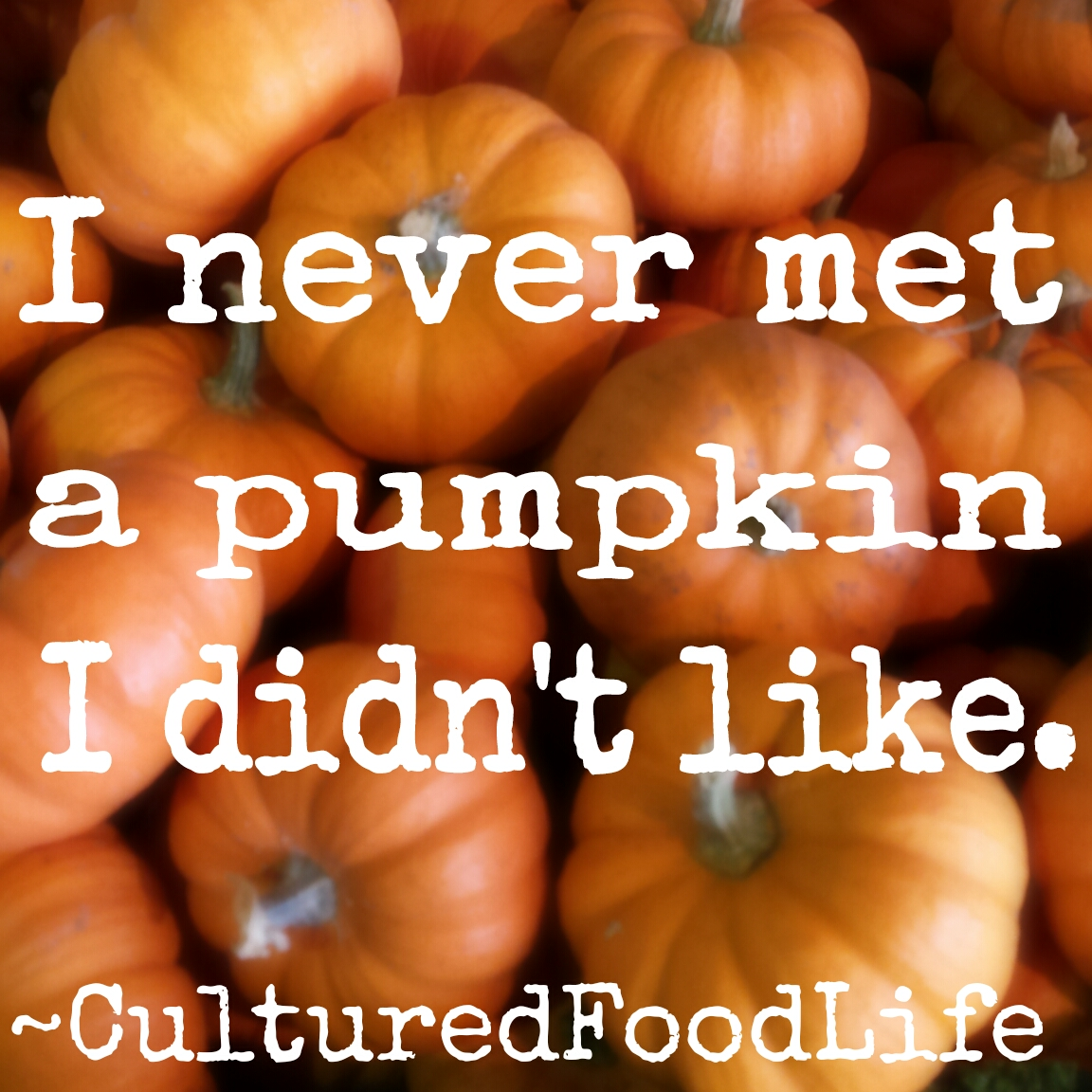 Pumpkin quote
