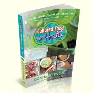 Cultured Food for Health 3d square