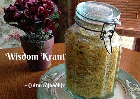 Wisdom Kraut q-copy