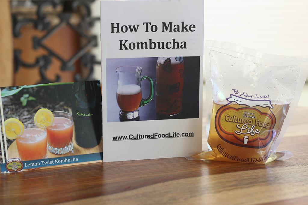 kombucha starter