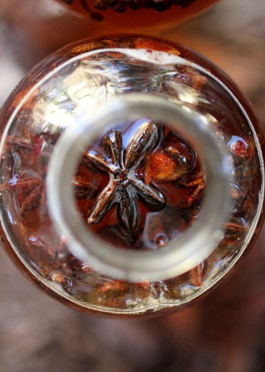 Licorice Kombucha