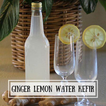 Ginger Lemon Water Kefir