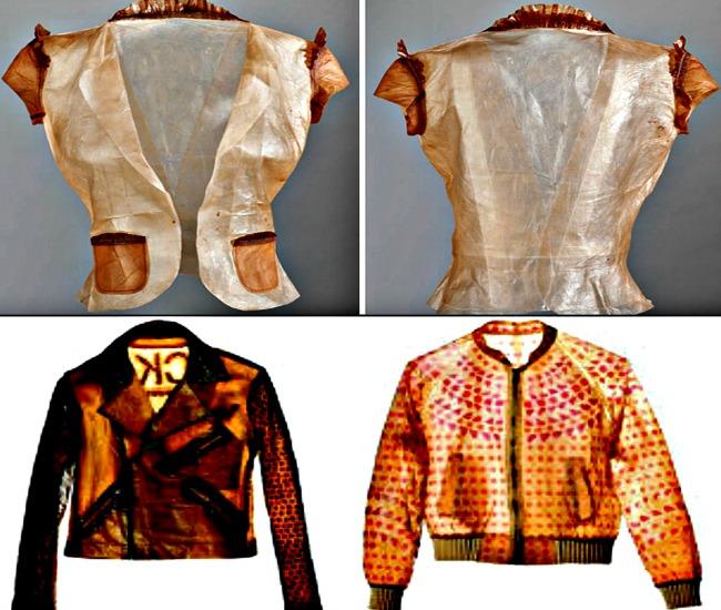 Kombucha Clothes