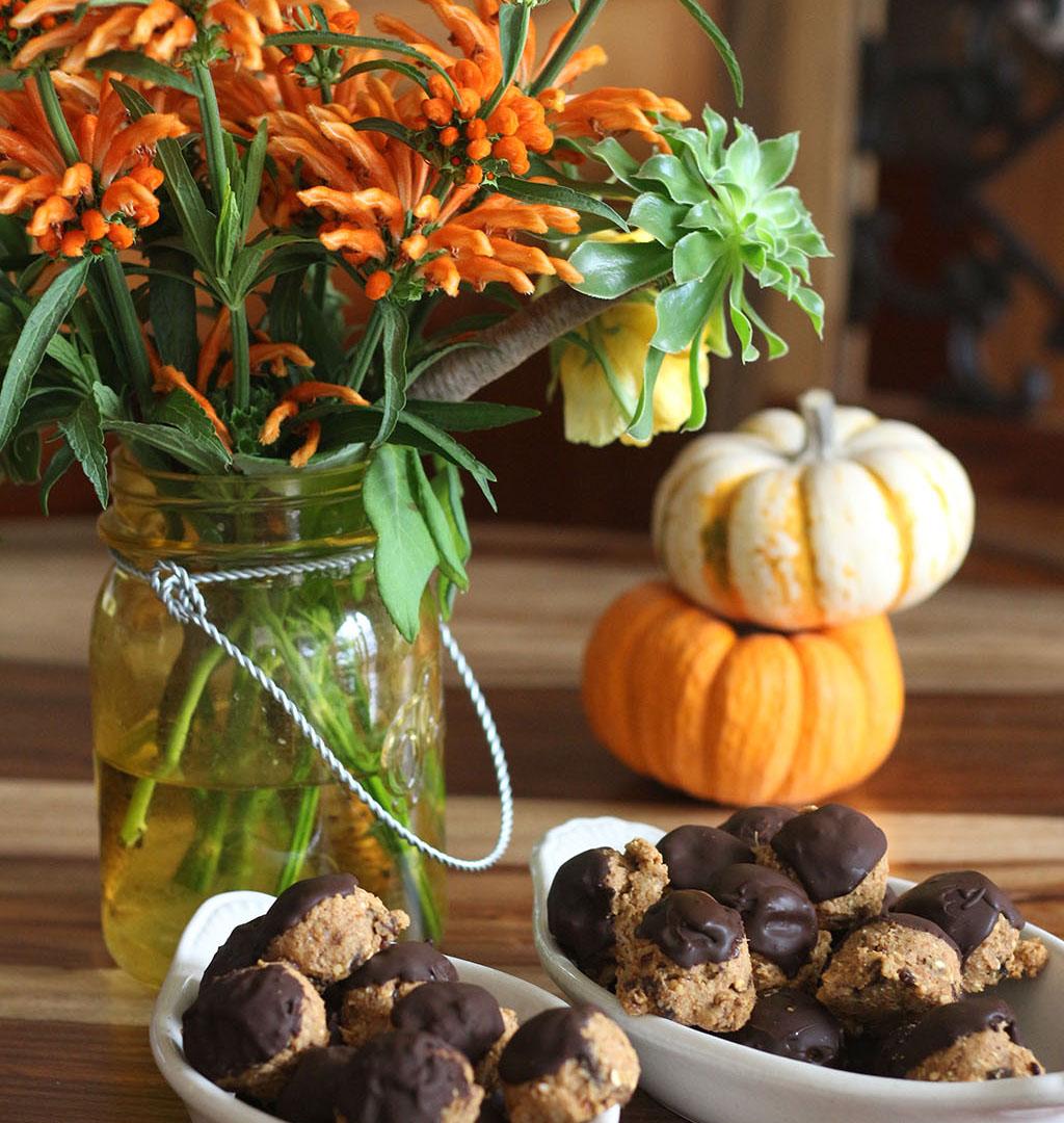 pumpkin-kefir-balls-3