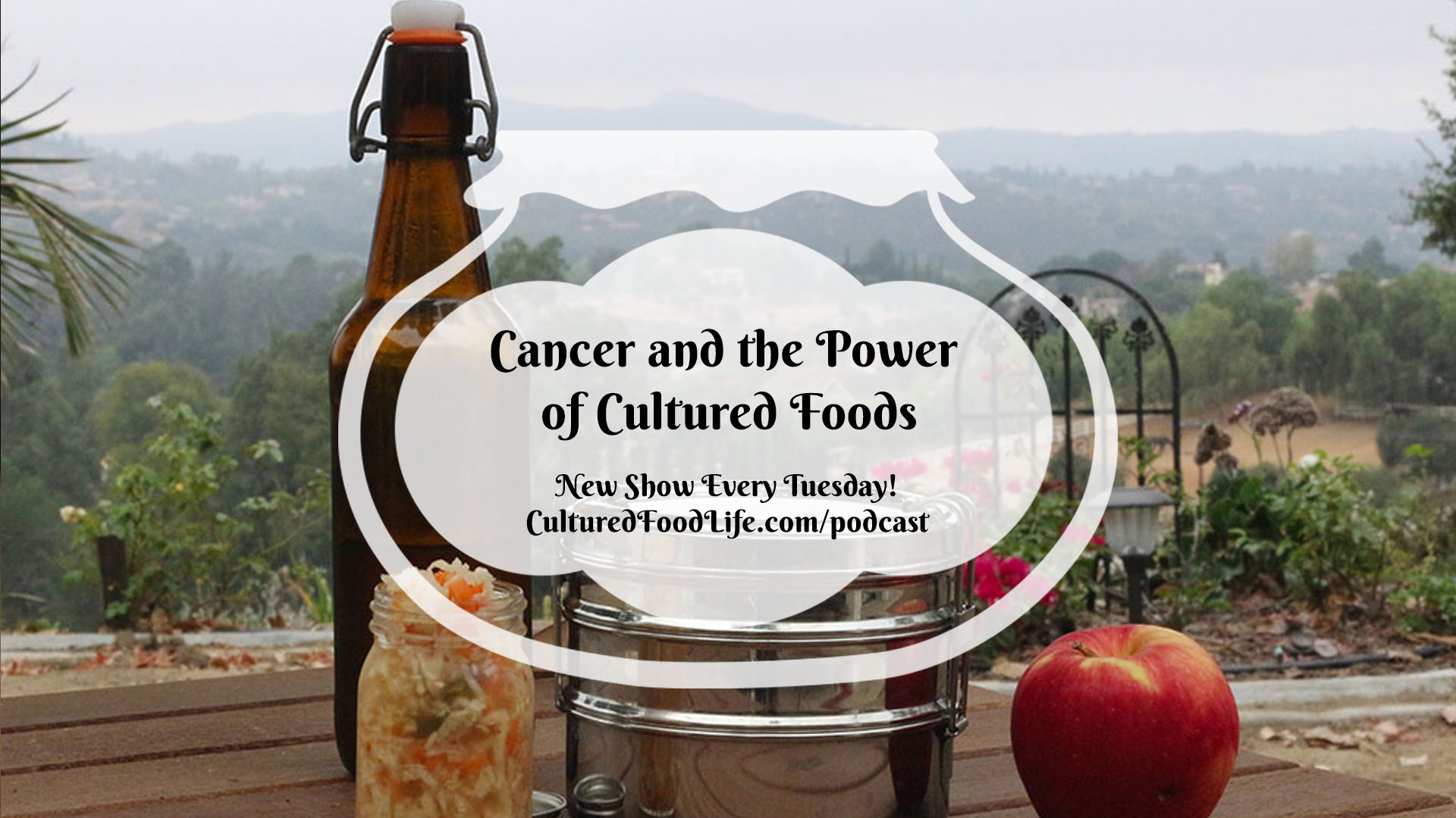 Cancer and the Power of Cultured Foods full