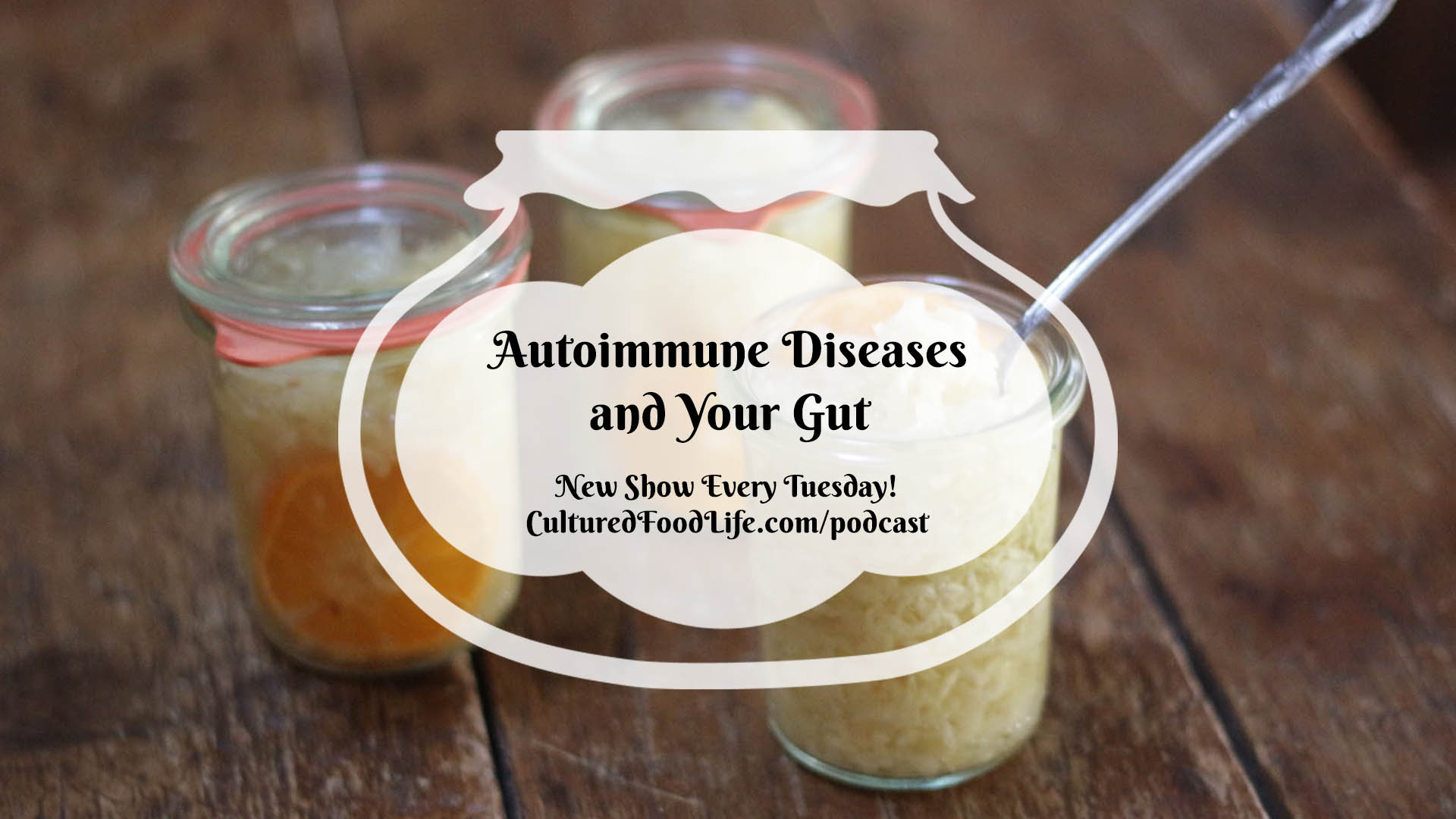 Episode 15: Autoimmune Diseases and Your Gut - Cultured Food