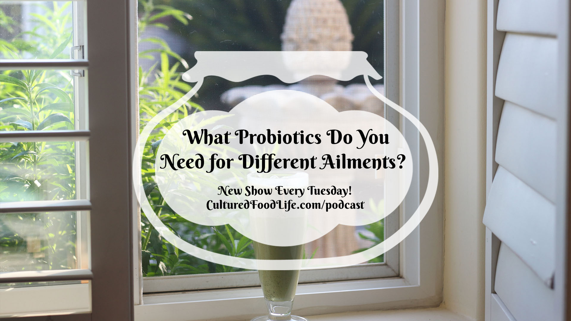 What Probiotics Do You Need for Different Ailments
