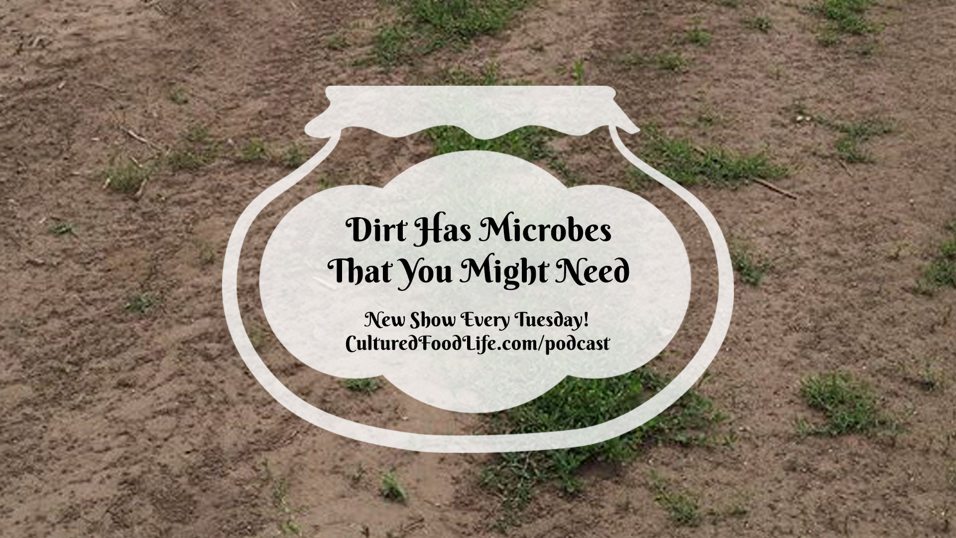 Dirt Has Microbes That You Might Need full