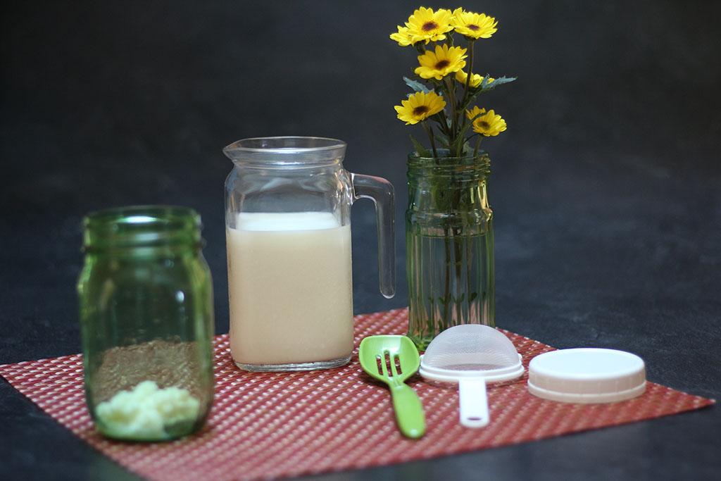 kefir grains and milk