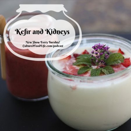 Kefir and Kidneys Square
