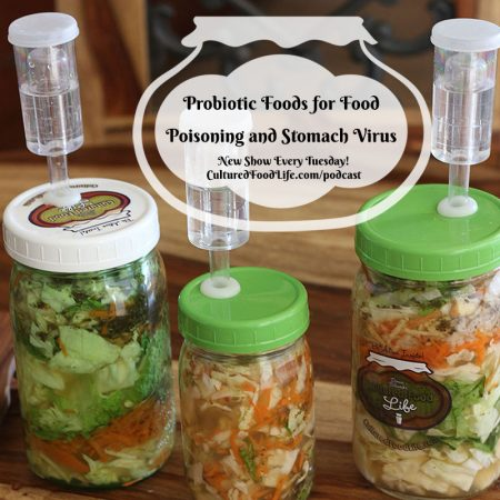 Probiotic Foods for Food Poisoning and Stomach Virus Square