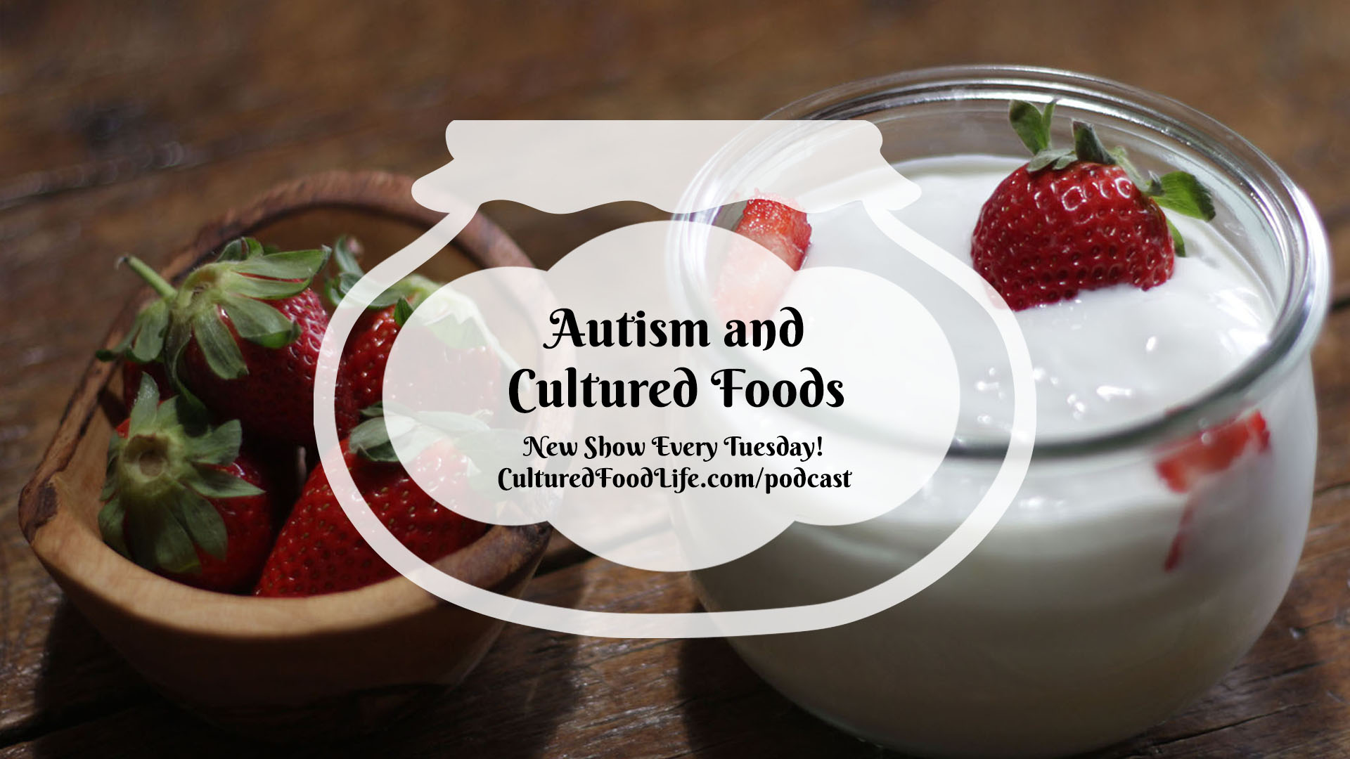 Autism and Cultured Foods Full