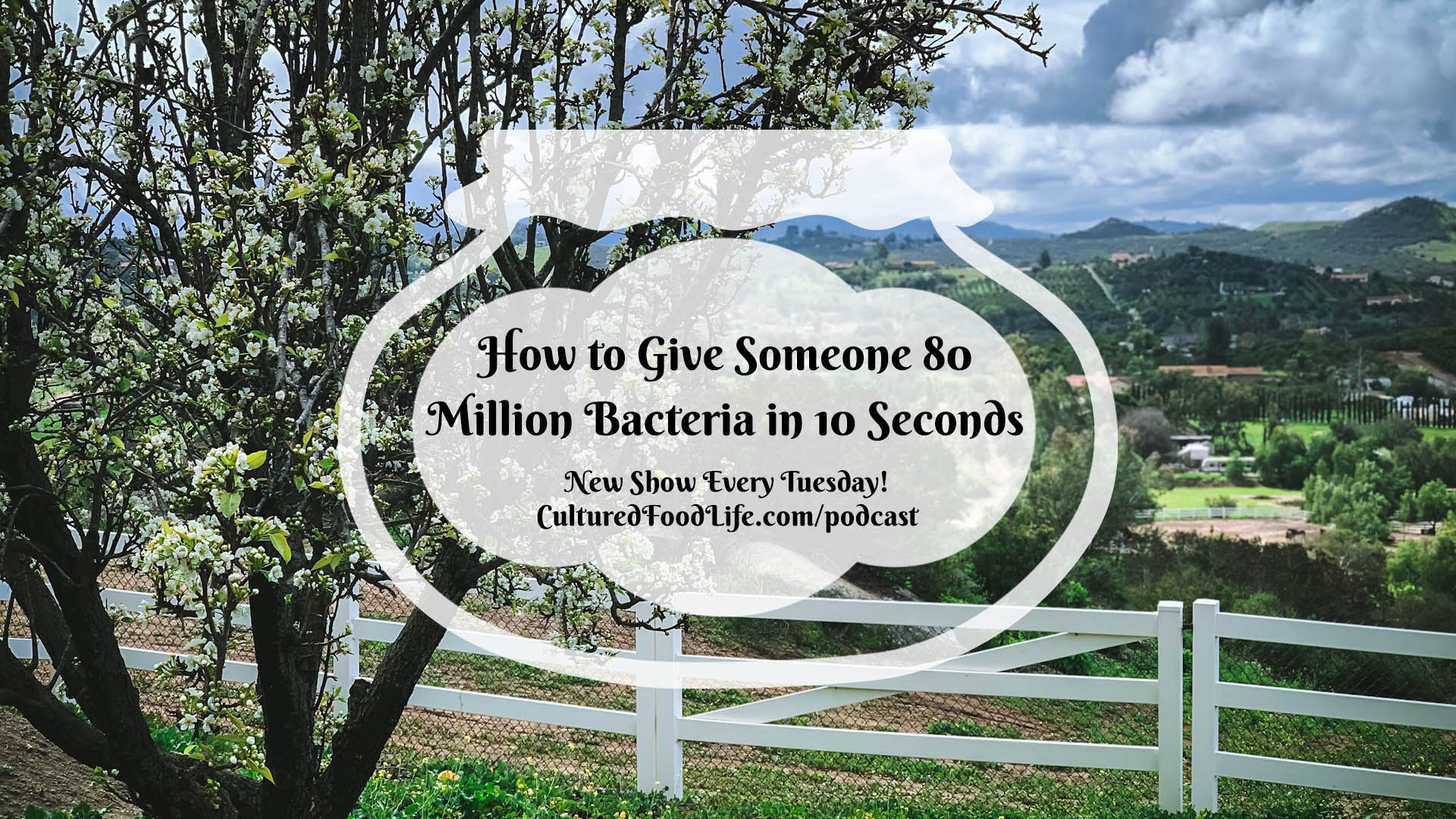 How to Give Someone 80 Million Bacteria in 10 Seconds Full