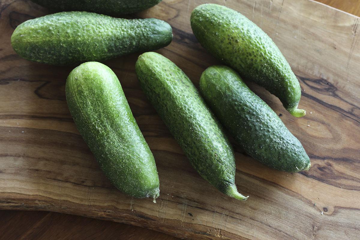 cucumbers2