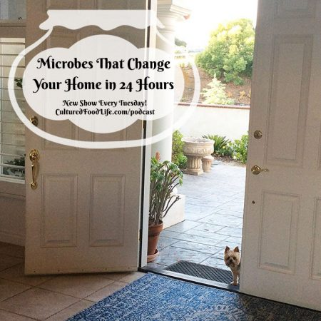 Microbes That Change Your Home in 24 Hours