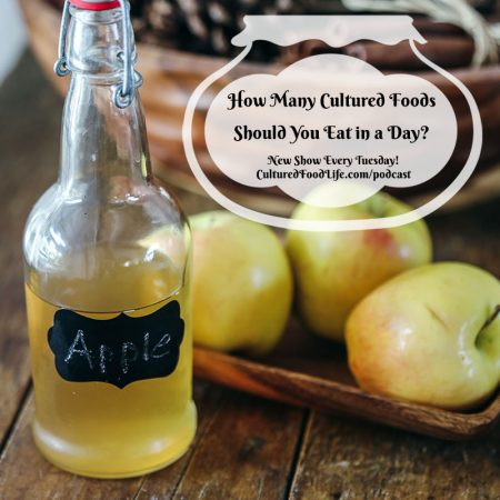 How Many Cultured Foods Should You Eat in a Day