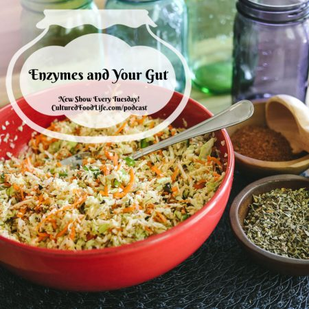 Enzymes and Your Gut