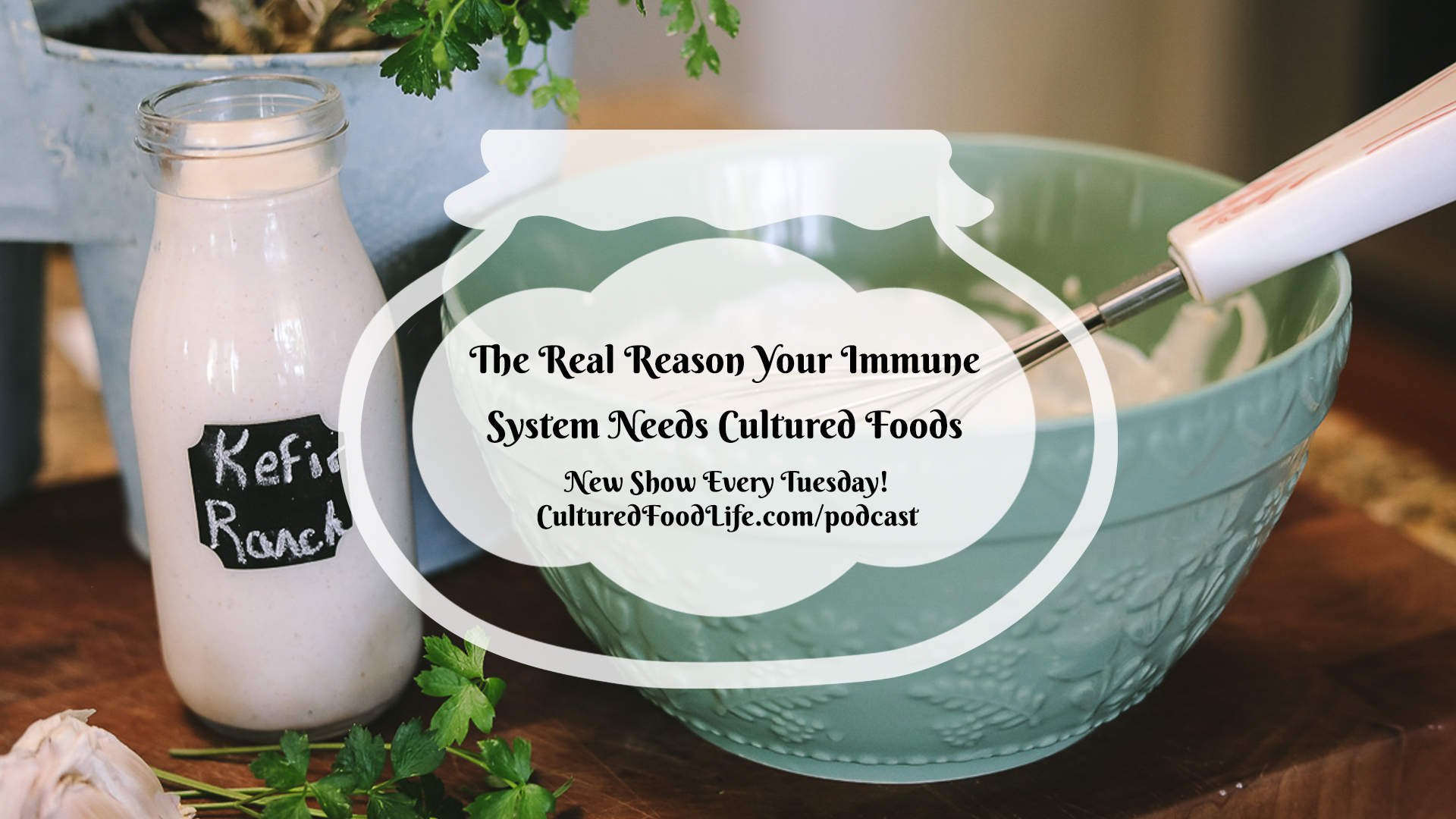 The Real Reason Your Immune System Needs Cultured Foods