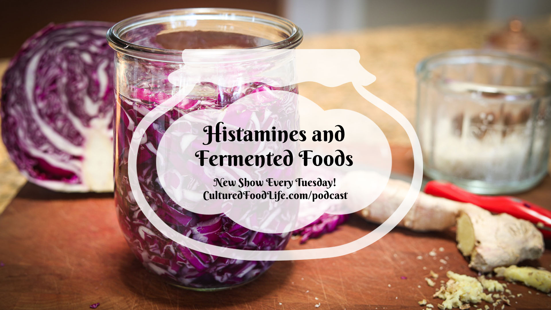 Histamines and Fermented Foods Full