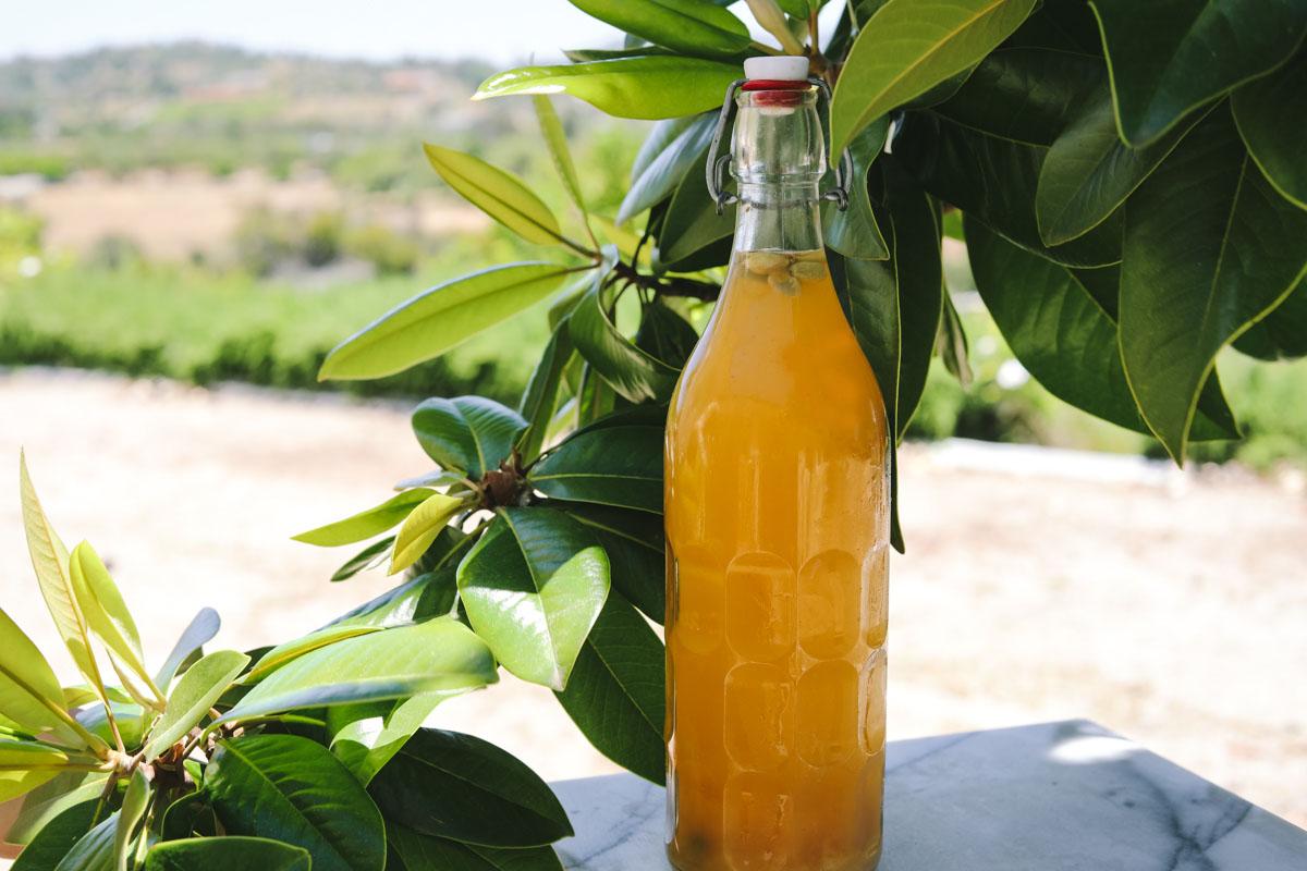 Apricot Spice Kefir Soda h-3