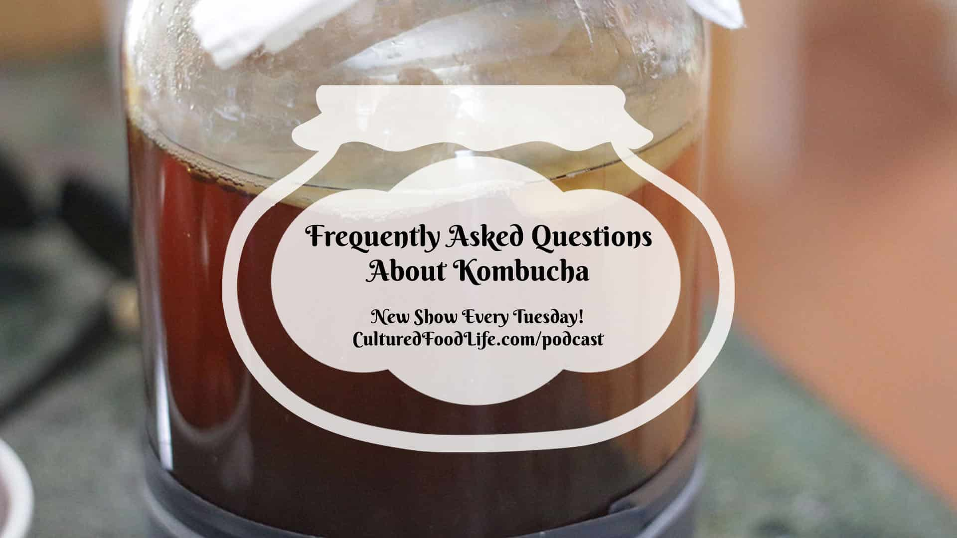 Frequently Asked Questions About Kombucha