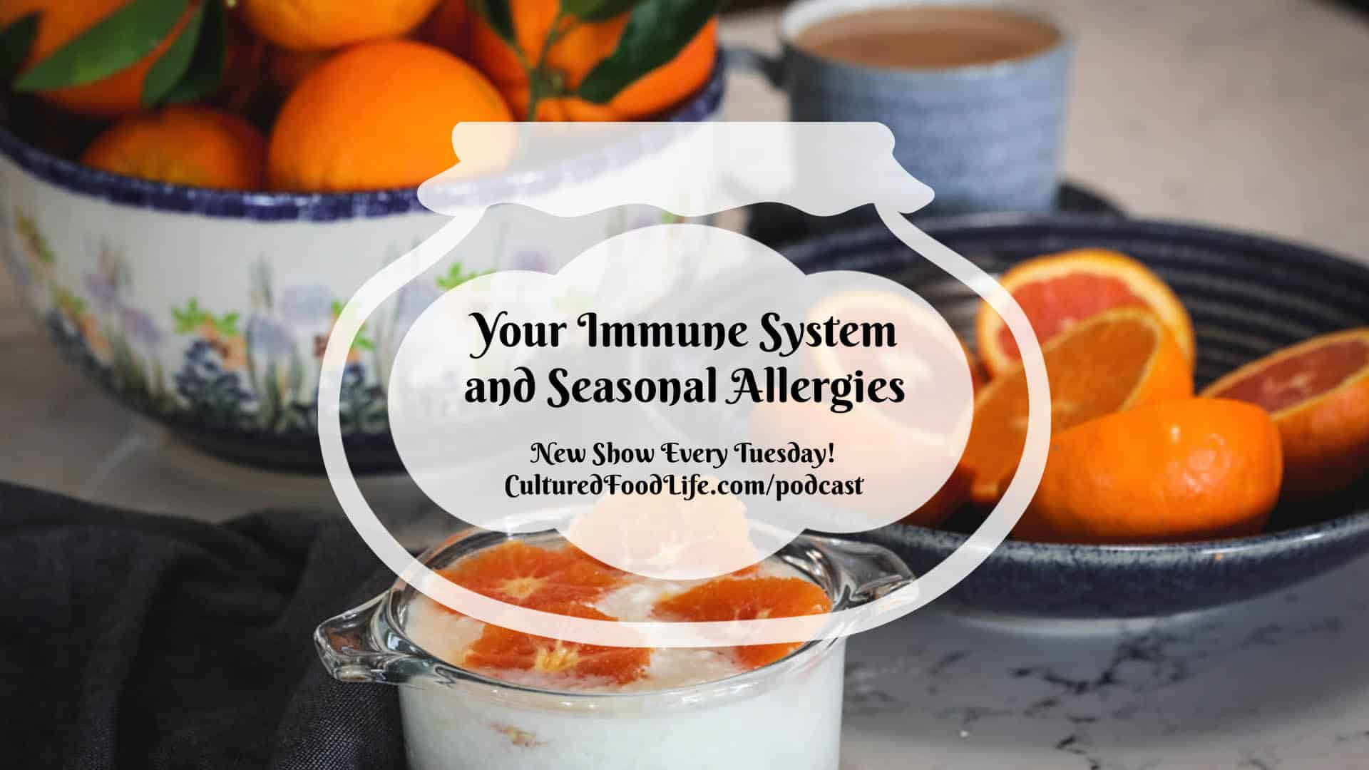 Your Immune System and Seasonal Allergies
