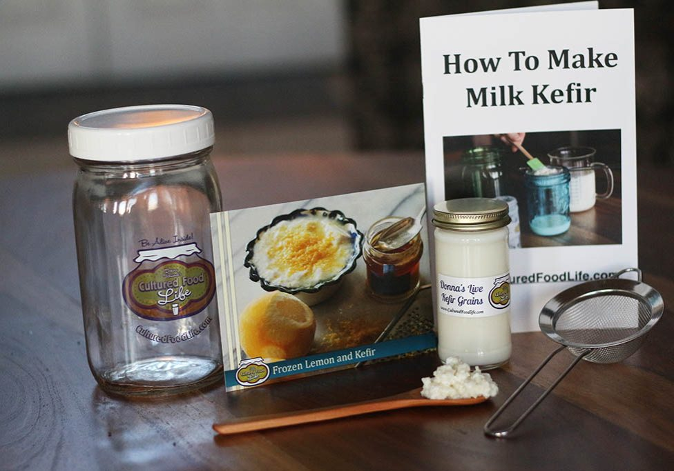 kefir grain kit
