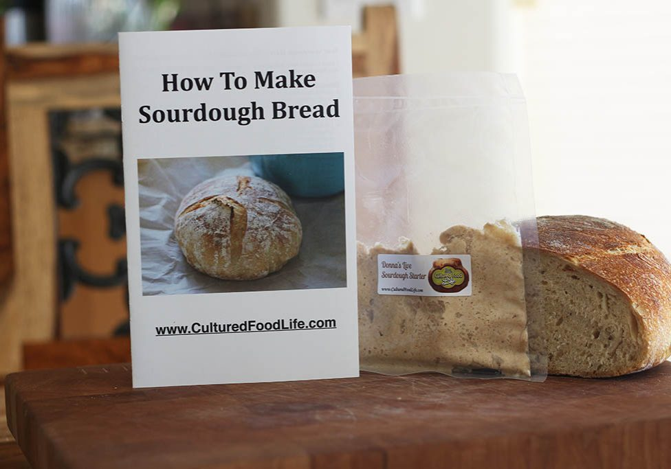 sourdough bread starter