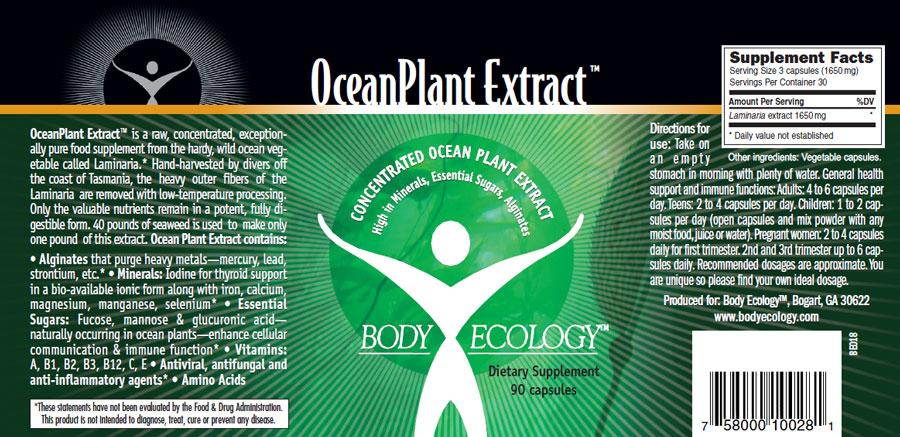 ocean-info copy